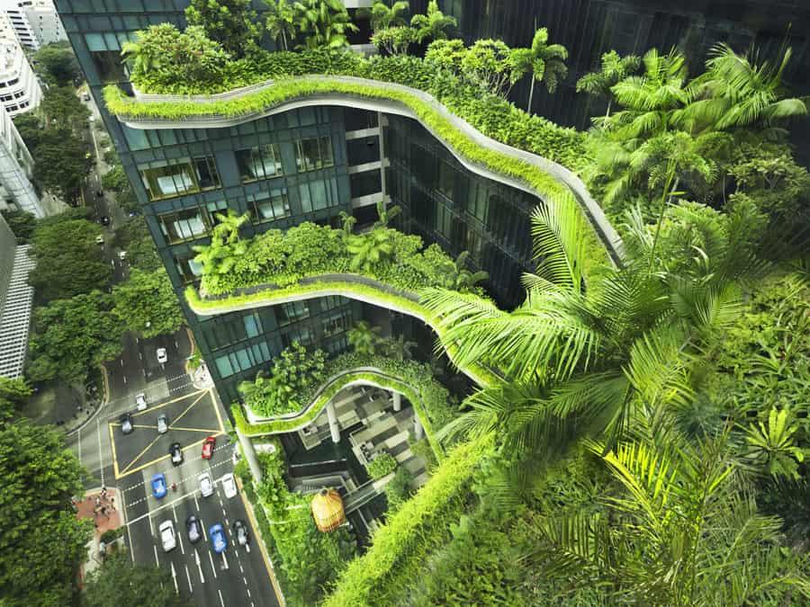 Singapore – City in Nature